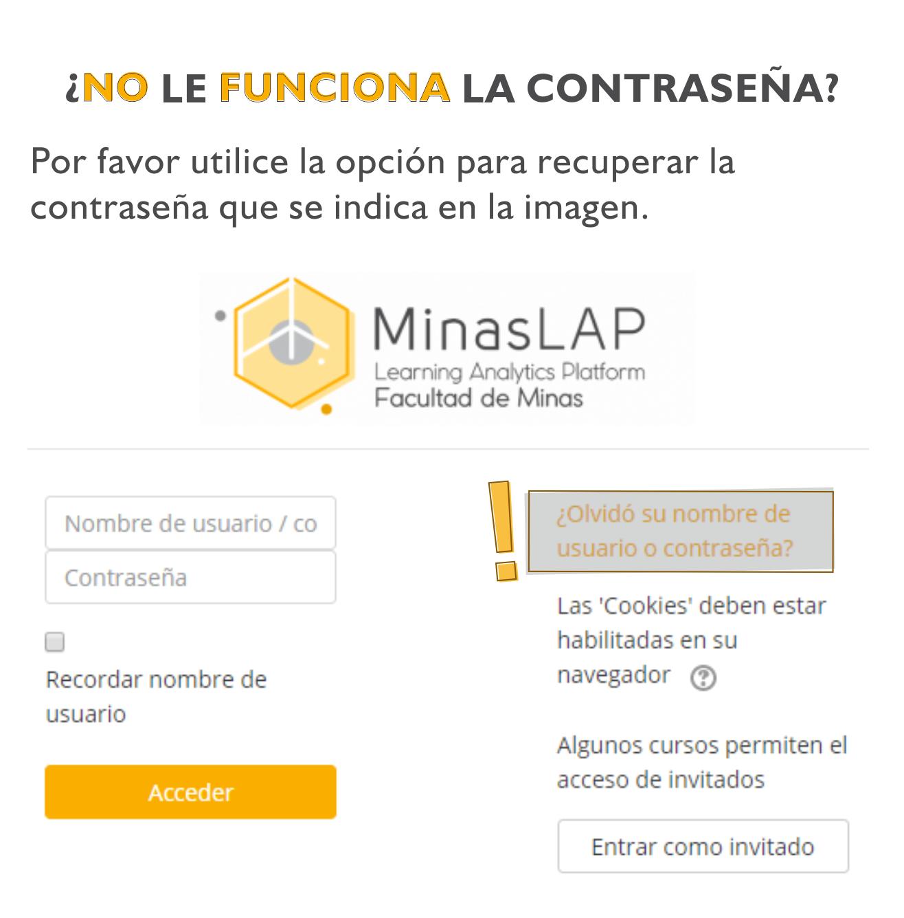 No_Ingresa